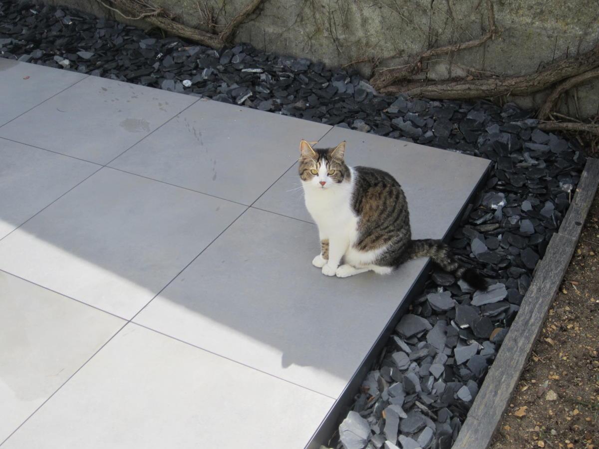 Création terrasse grès cérame près de La Rochelle
