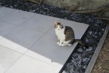 Terrasse en grès cérame à Périgny (17)